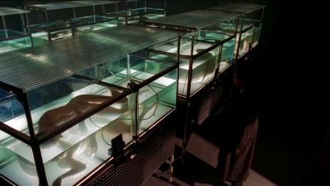 Mulder öffnet die Büchse(n) der Pandora.