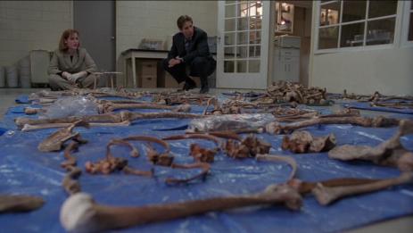 Knochenjob für Mulder und Scully.